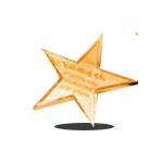 estrella-oro-IEP